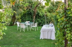 garden-party-959181_1280